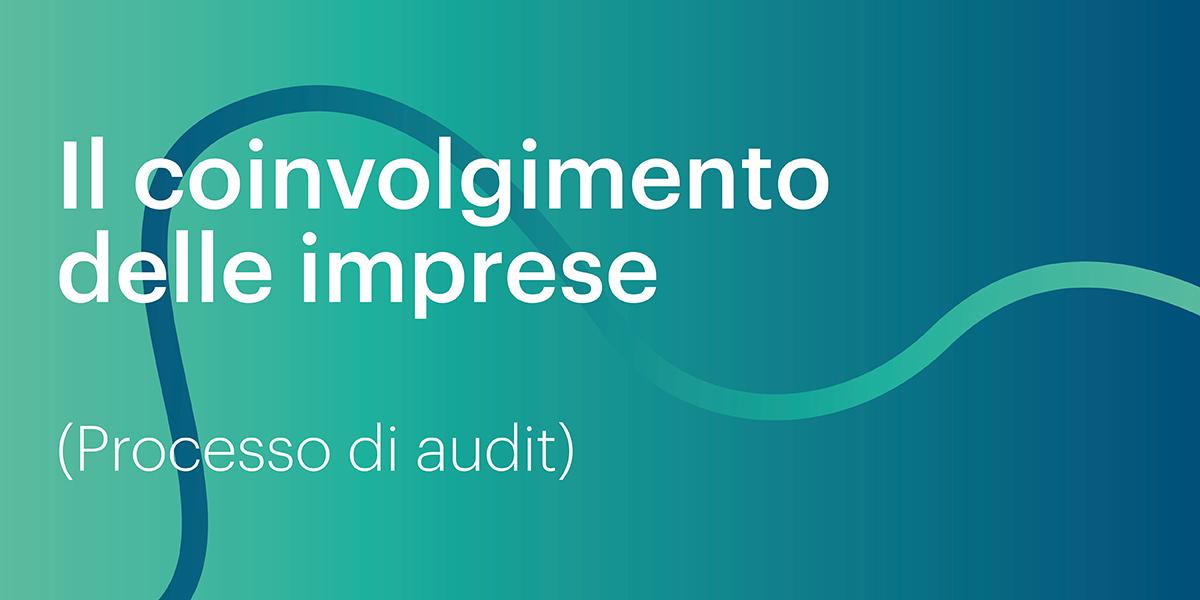 Immagine con testo: Il coinvolgimento delle imprese (processo audit)