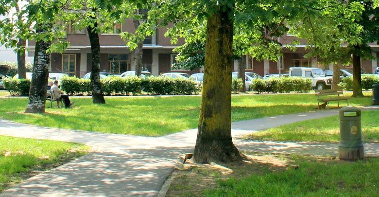 Lavori su aree a verde pubblico
