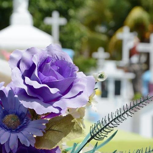 Servizi cimiteriali - CARD