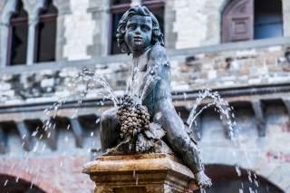 Fontana del Bacchino, Piazza del Comune